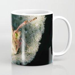 Dewey Butterfly Coffee Mug