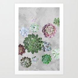 Simple succulents Art Print
