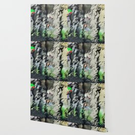Santa Cruz rain Wallpaper