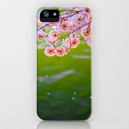 Beautiful Japanese Pink Cherry Blossom Over A colorful Green Garden Pond Petals Drifting Away iPhone Case