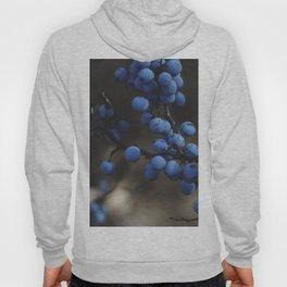 Blueberry Brambles Hoody