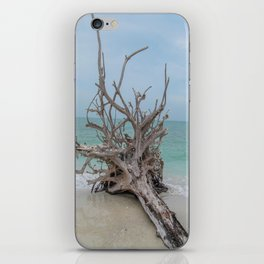 Remember Your Roots iPhone Skin