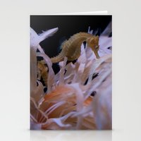 sea horse Stationery Cards featuring Sea Horse by Starr Cuevas Photography