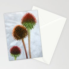 Stripped Echinacea Stationery Cards