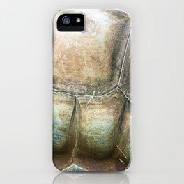 Aldabra Giant Tortoise Texture iPhone Case