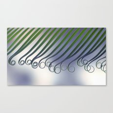 Cycas - leaf born 2664 Canvas Print