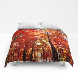 Sun in the Trees Comforters