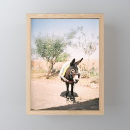 Cute donkey in the Agafay Desert of Morocco | Marrakech travel photography Framed Mini Art Print
