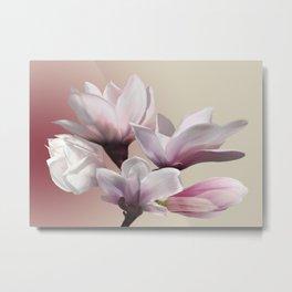 Magnolien Metal Print