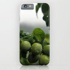 Plums Slim Case iPhone 6s