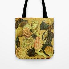 Shells of Sound Tote Bag