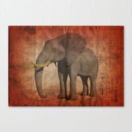 Pachydermy Canvas Print