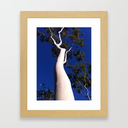 naked tree with the perfect blue Framed Art Print