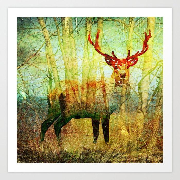 Deer In Woods Art Print By Osnatlippa Society6