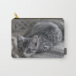 Our kitty on Quebec St. 02 Carry-All Pouch