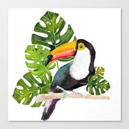 Watercolor toucan Canvas Print