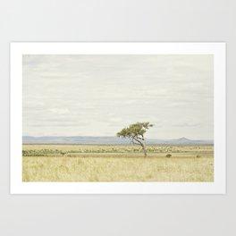 tree of life::kenya Art Print