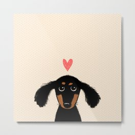 Dachshund Love | Cute Longhaired Black and Tan Wiener Dog Metal Print