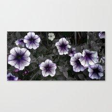 Strange Blooms Canvas Print