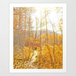Sun Valley Art Print