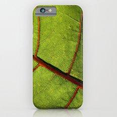 Leaf Veins II iPhone 6s Slim Case