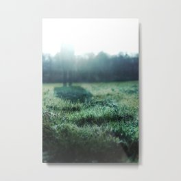If I Were the Frost... Metal Print