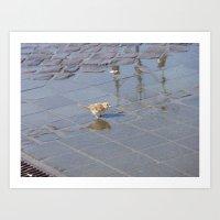 jack sparrow Art Prints featuring sparrow... jack? by death above