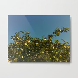 Don't Sit Under the Apple Tree Metal Print