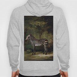George Stubbs - Zebra Hoody
