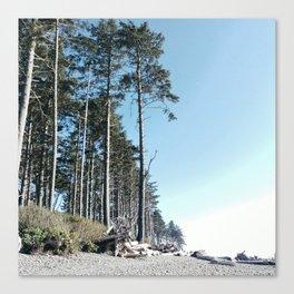 Washington  State beach Canvas Print
