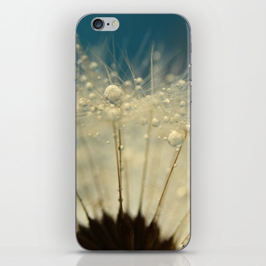 Dandelion with Blue iPhone Skin