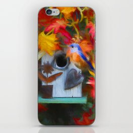 Surrounded In Fall Color iPhone Skin