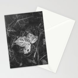 A white leaf in the dark garden leaves Stationery Cards