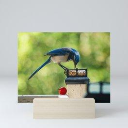 Making the selection Mini Art Print