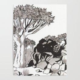 Quiver Tree & Rocks - Namibia Poster