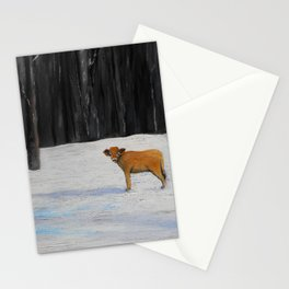 Kylee's Kenyon Calf Stationery Cards