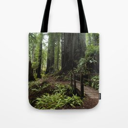Redwood Roaming - California Wanderlust Tote Bag