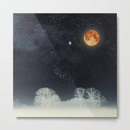 Venus and Moon Night Metal Print