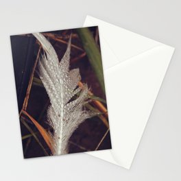 Beach Feathers 3 Stationery Cards