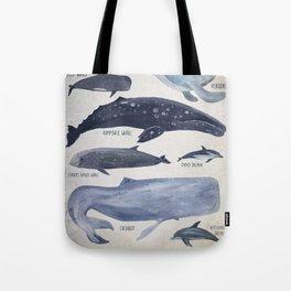 Mediterranean Cetaceans Tote Bag