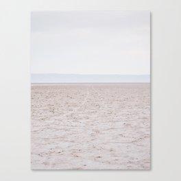 2 WHEELS Canvas Print