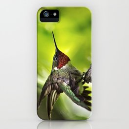 Hummingbird Dominance iPhone Case