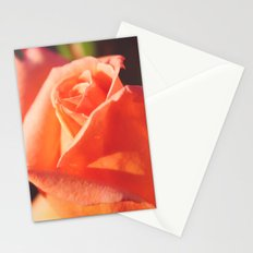 Peachy Rose Stationery Cards