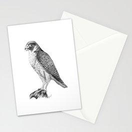 Peregrine Halcon Stationery Cards