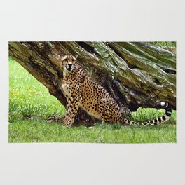 Wild Cheetah Rug