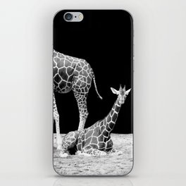 Black and White Giraffes Two Giraffes iPhone Skin