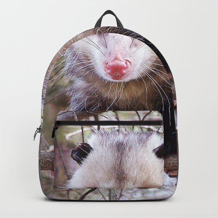 Possum Staredown Backpack