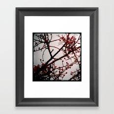 Maroussia Framed Art Print