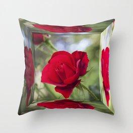 Rose Mirror Box Throw Pillow