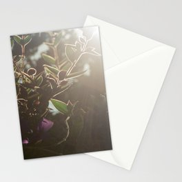 Whatever I Did For You Last Year Stationery Cards